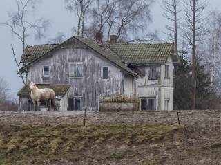 Foto: Svein Olav Nymoen