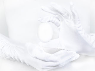 November: Egg på hvit bakgrunn