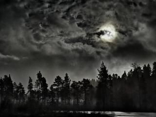 Foto: Nina Larsen